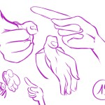 mains 19