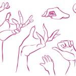 mains 20