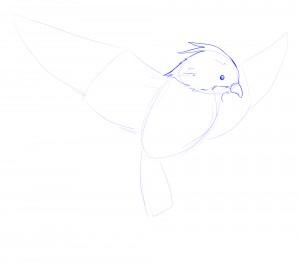 bec oiseau2