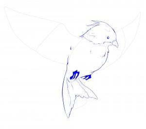 griffes oiseaux