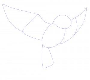 squelette oiseaux