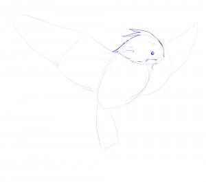 tête oiseaux