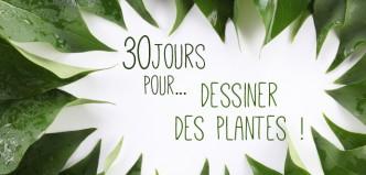 bannière plantes